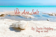 We are the Salt